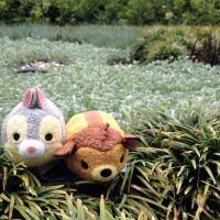 Zoom-Around-the-Park-with-Tsum-Tsum-Bambi