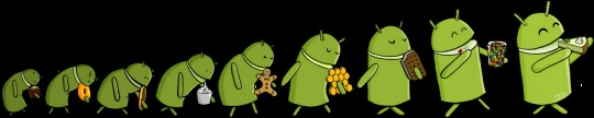 2012.11.30_android_evolution-540x108