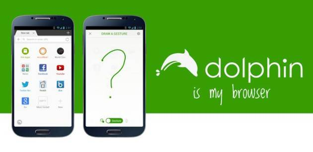 Dolphin Browser now with flash player for Android Lollipop devices