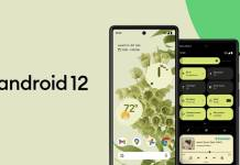 Android 12 Official Launch
